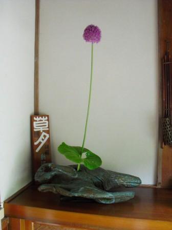 kafu_20130618