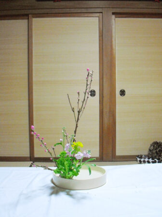 shinka_20170205